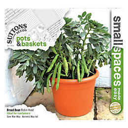 Suttons Small Space Broad Bean Seeds, Robin Hood