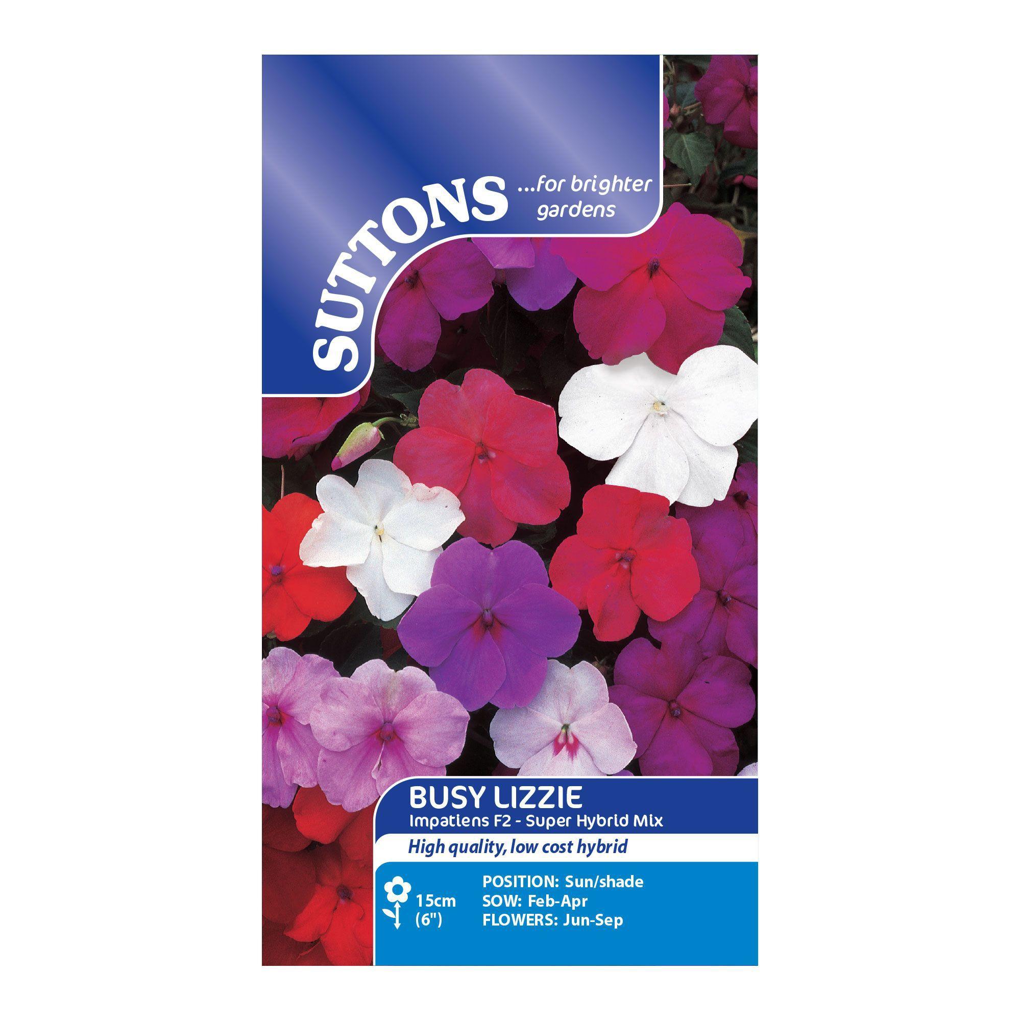 Suttons Busy Lizzie Seeds, Impatiens F2 Super Hybrid