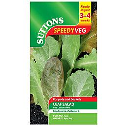 Suttons Speedy Veg Leaf Salad Seeds, Cos Lettuce