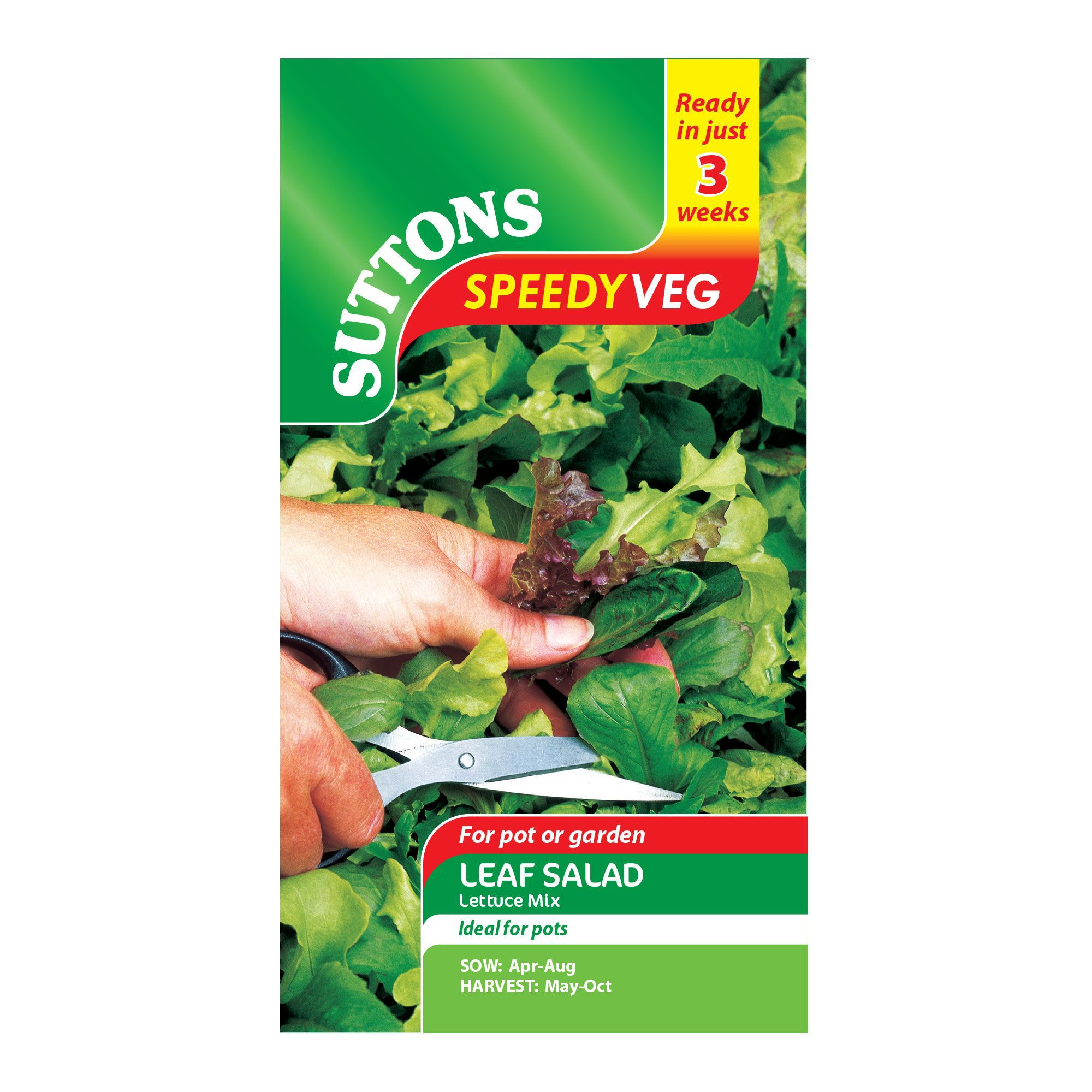 Suttons Speedy Veg Leaf Salad Seeds, Lettuce Mix