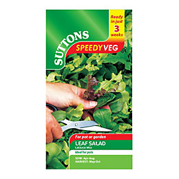 Suttons Speedy Veg Leaf Salad Seeds, Lettuce Mix