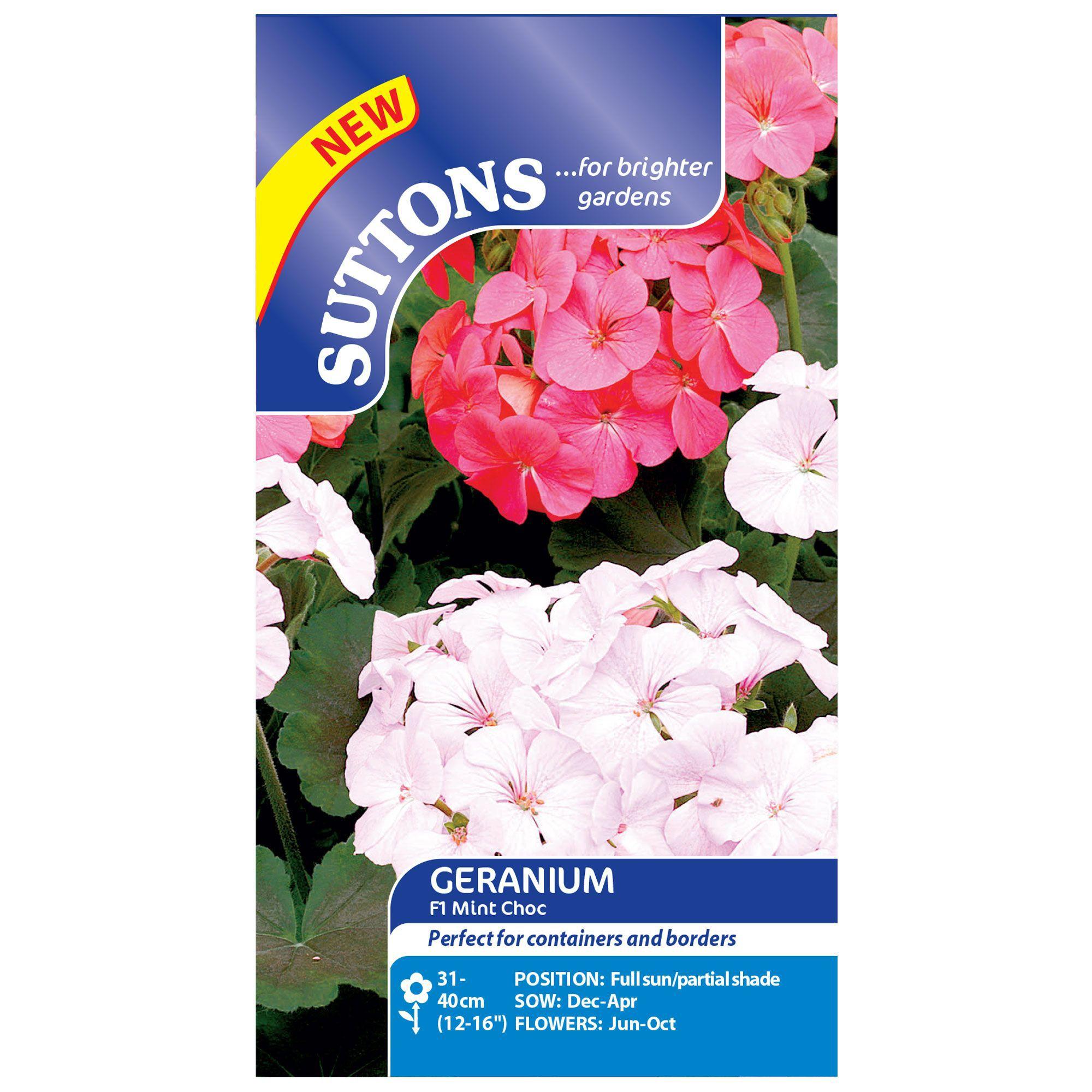 Suttons Geranium Seeds, F1 Mint Choc