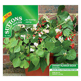 Suttons Dwarf Runner Bean Seeds, Jackpot Mix