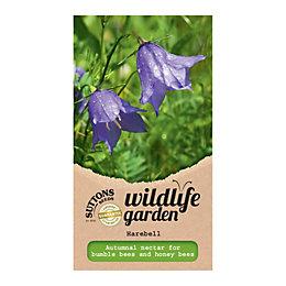 Suttons Harebell Seeds, Wildflower