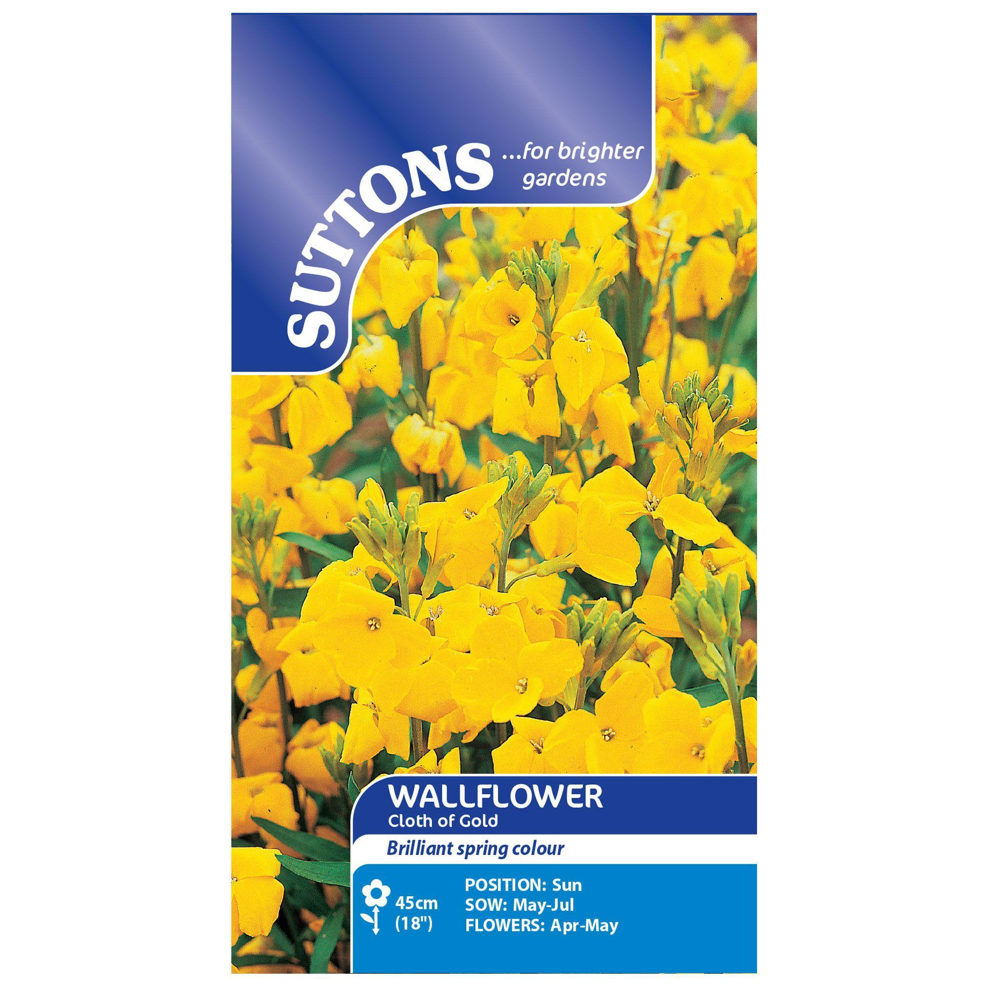 Suttons Wallflower Seeds, Cloth Of Gold