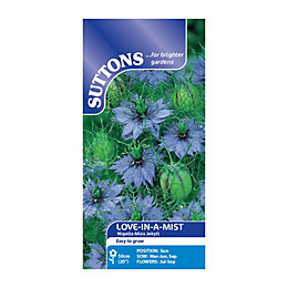 Suttons Love-In-A-Mist Seeds, Nigella Miss Jekyll