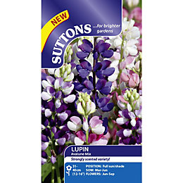 Suttons Avalune Mix Seeds, Non Gm