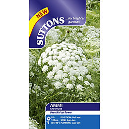 Suttons Snowflake Seeds, Non Gm