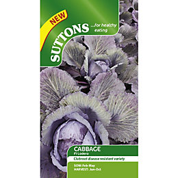 Suttons Lodero Red Seeds, Non Gm