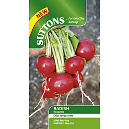 Suttons Rougette Seeds, Non Gm