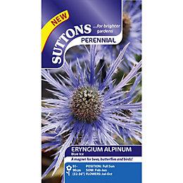 Suttons Alpinum Blue Ice Seeds, Non Gm