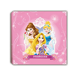 Disney Princess Pink Canvas Art (W)20cm (H)20cm
