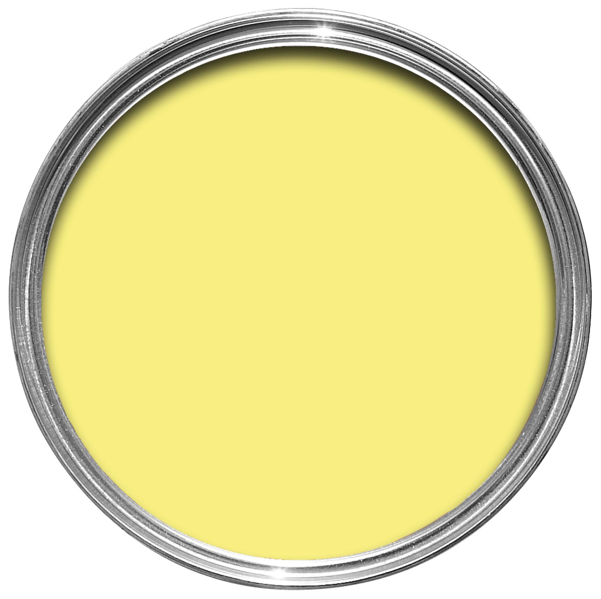 Rust Oleum Painter S Touch Internal Amp External Lemon Gloss