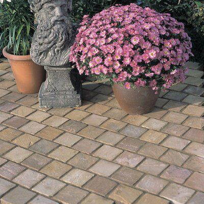 Autumn Green Natural Sandstone Paving Setts (L)100mm (W)100mm,
