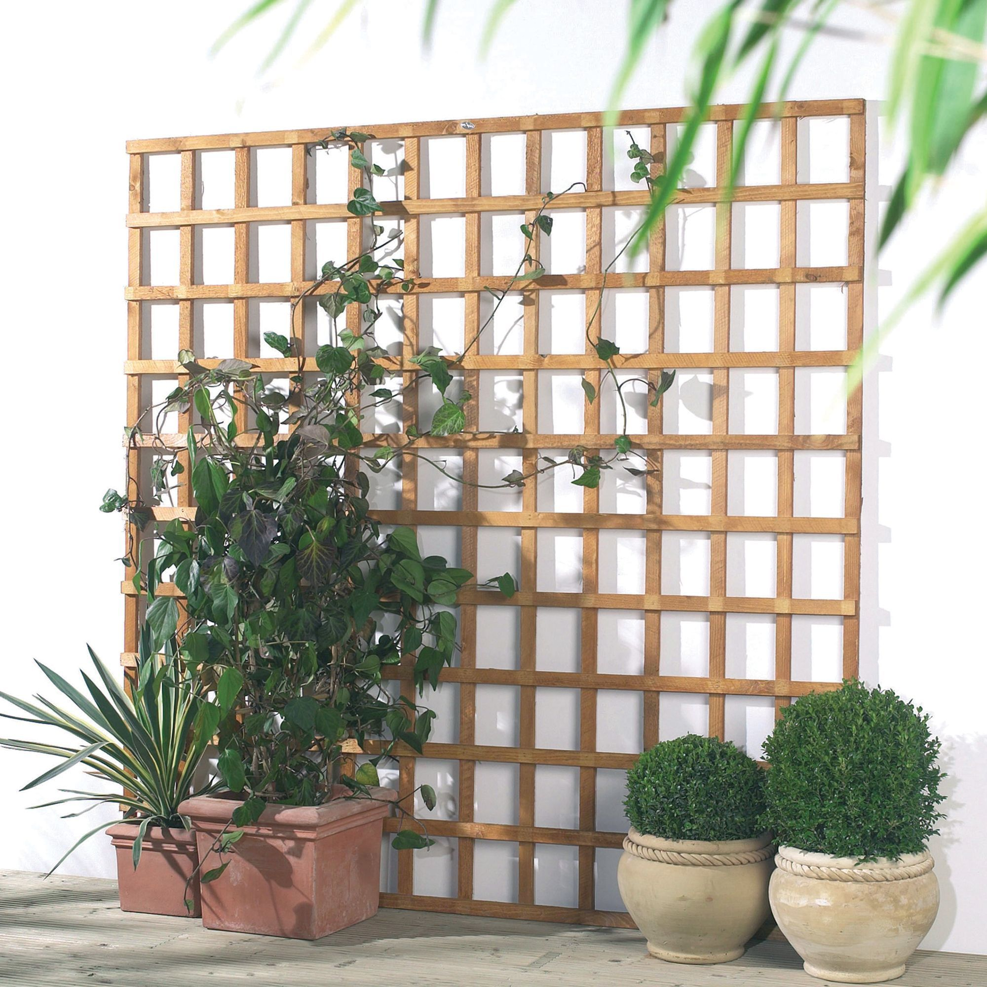 Traditional Timber Square Trellis Panel (h)1.83m(w)0.32 M