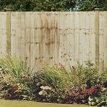 Professional Feather Edge Overlap Fence Panel 1.83 x 1.5m in garden