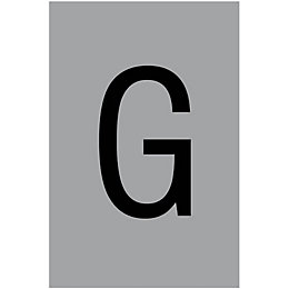 Silver Effect PVCu House Letter G