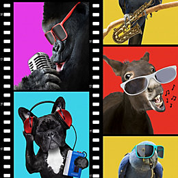 Animals On Film Wallpaper