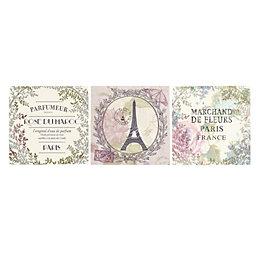 Paris Souvenirs Pastel Shades Canvas Art Set (W)20cm