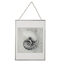 Shell Grey Hanging Framed Print (W)30cm (H)40cm