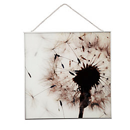 Windswept Dandelion Neutral Framed Print (W)40cm (H)40cm