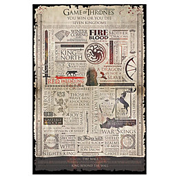 Game Of Thrones Infographic Poster (W)61cm (H)91.5cm