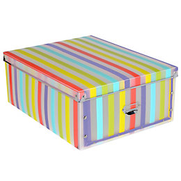 Form Stripe Multicolour Plastic Storage Box