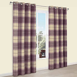 Esmeralda Purple Check Thermal Eyelet Lined Curtains (W)117cm
