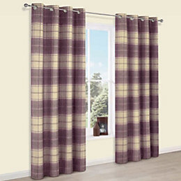 Esmeralda Purple Check Thermal Eyelet Lined Curtains (W)167cm