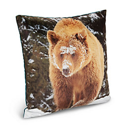 Larkin Bear Cushion