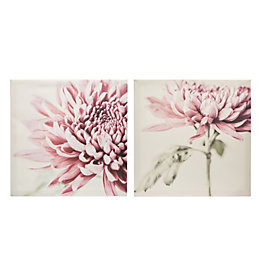 Chrysanthemum Pink Canvas (W)600mm (H)600mm Set of 2