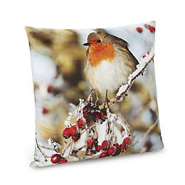 Elana Robin Cushion