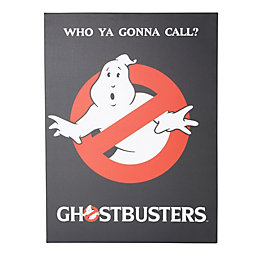 Ghostbusters Canvas Print (W)60cm (H)80cm
