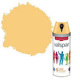 Valspar Interior & Exterior Tangerine Bliss Gloss Spray