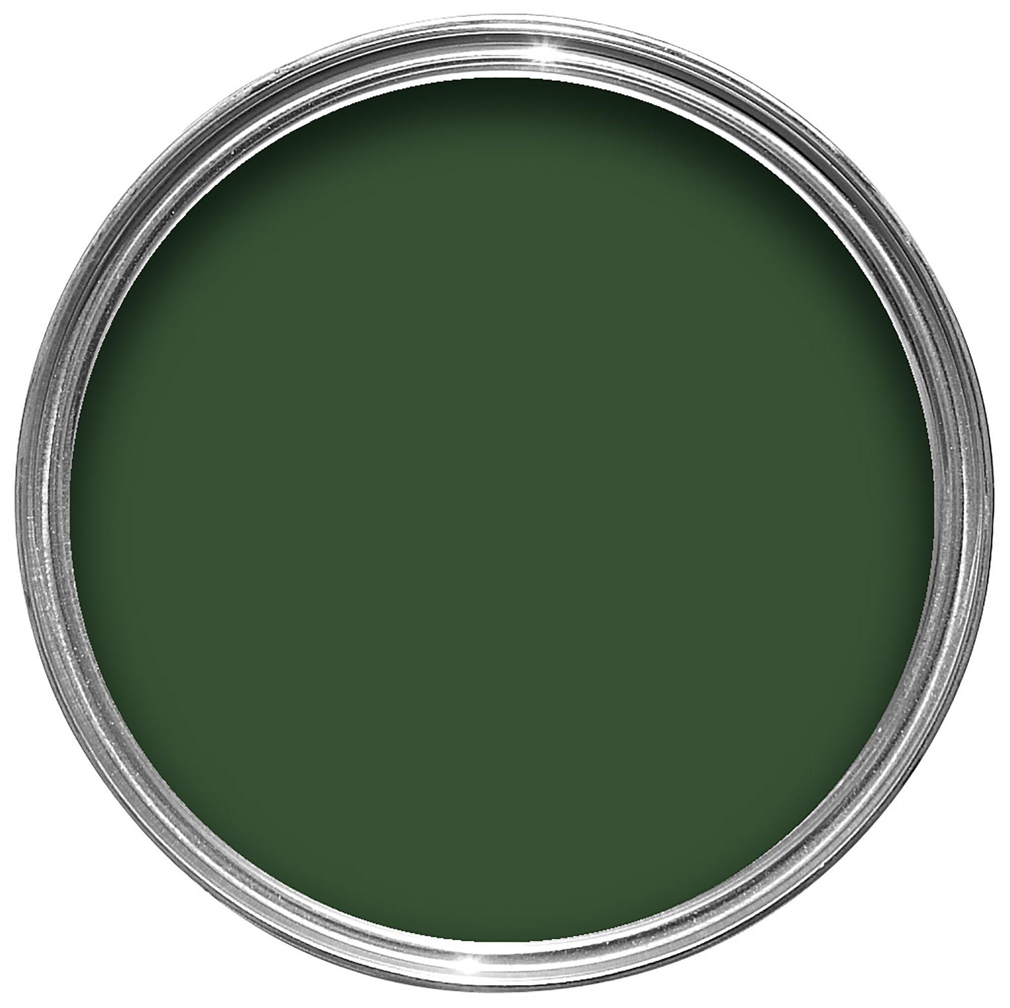 Colours Exterior Buckingham Green Gloss Wood & Metal Paint 2.5l