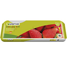 Verve Peat Free Growing-Bag (W)11kg