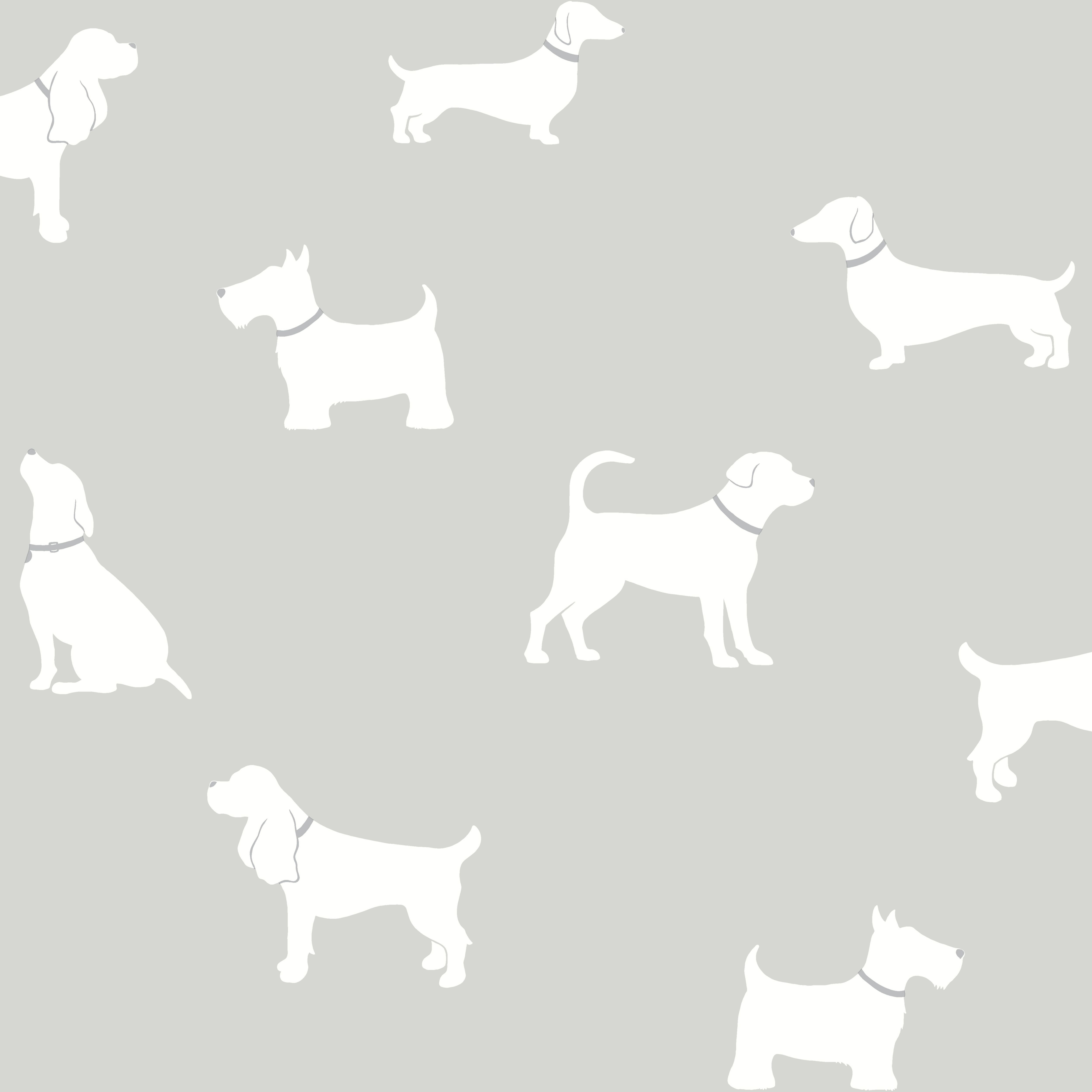 White Kitchen Furniture Sets Colours Pooch Grey Dogs Mica Effect Wallpaper