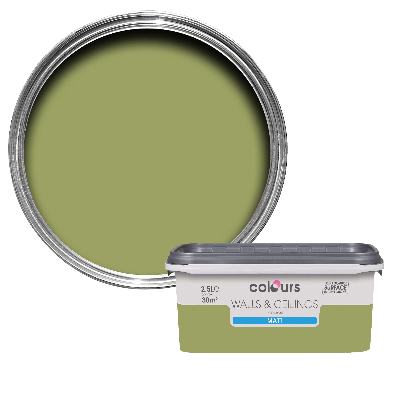 Colours Village Green Matt Emulsion Paint 2.5L | Departments | DIY at B&Q