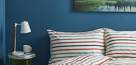 Buyers guide to paint