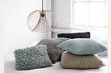 The Neutral Collection