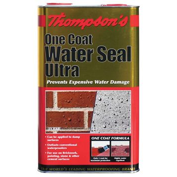 Thompson's Brick or Block Water Seal, Clear 5L
