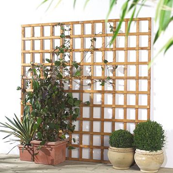 Grange Traditional 1.83 M x 1.2 M Trellis Panel, Softwood