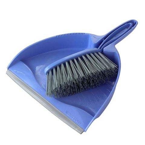 Dustpan & Stiff Brush