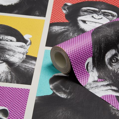 Cheeky Chimps Animal Wallpaper