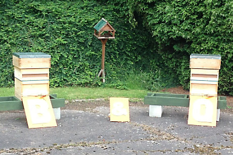 Bee hives at distribution centre