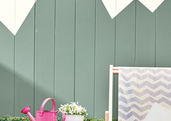 Shed & Fence Paint