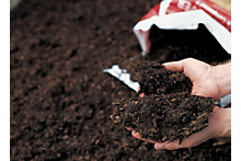 How to create your own compost