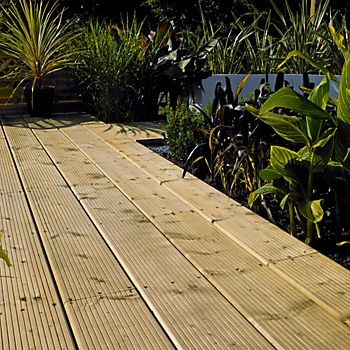 Tropical garden with extended decking