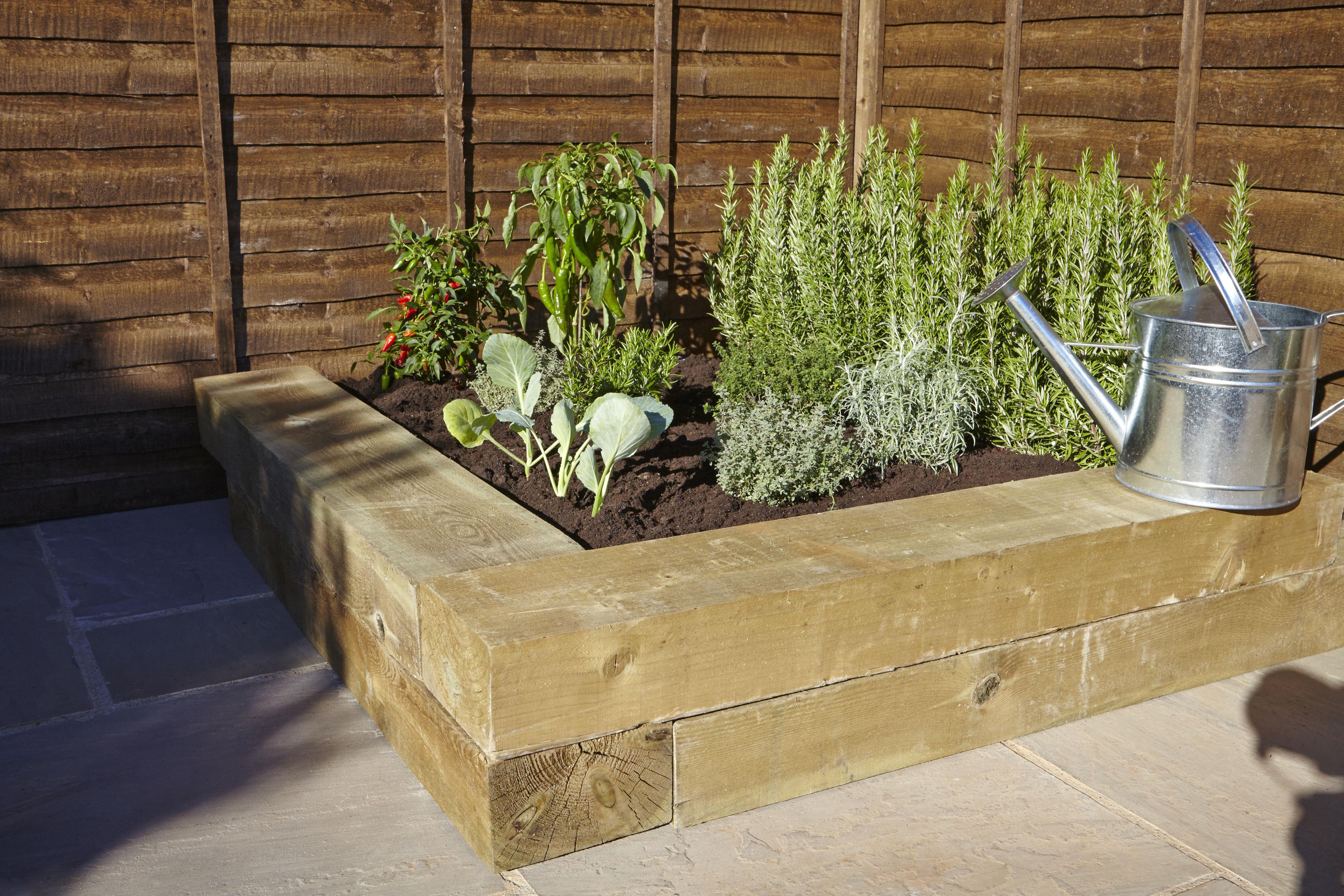 How to grow herbs Help Ideas DIY at BQ