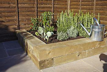 herbs in raised bed